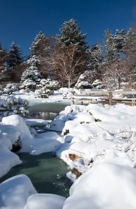006_dbg-snow