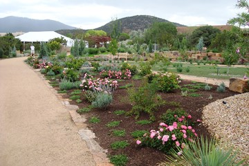 Birth Of A Garden In Santa Fe Denver Botanic Gardens