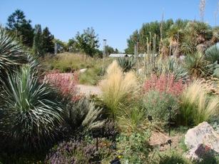 Reflecting on Darwin's Garden