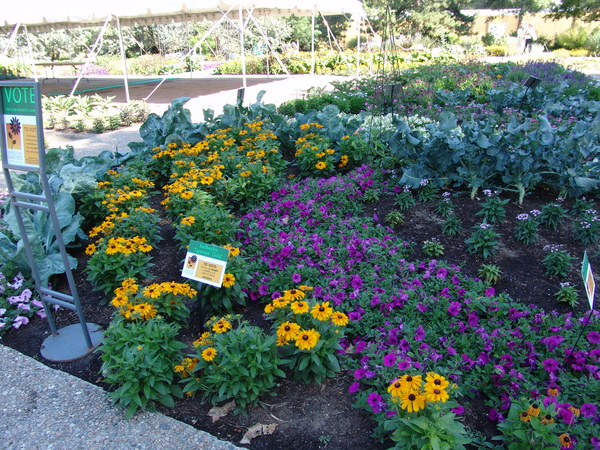 AGA Program at Denver Botanic Gardens