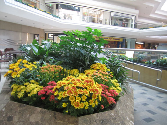 Cherry Creek Shopping Center Grand Court Display