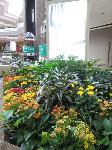 Cherry Creek Shopping Center Grand Court Display