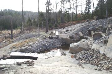 View of Peter Korn's rock garden