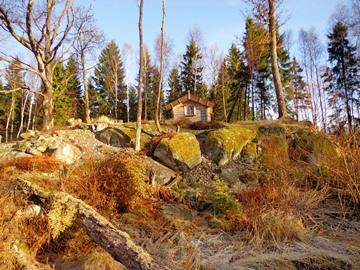 Cottage at top of Peter Korn's garden