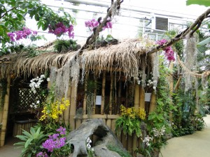 Tropical Exhibit