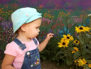 Toddler discovering sunflowers