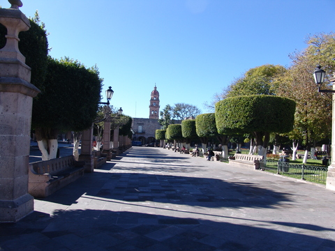 Formal garden surrounding the plaza