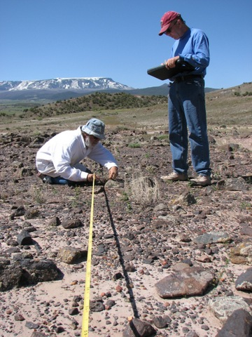 Rare Plant Monitoring Stewards