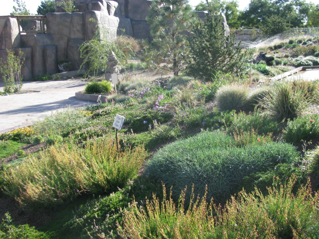 part two a green roof in the city denver botanic gardens