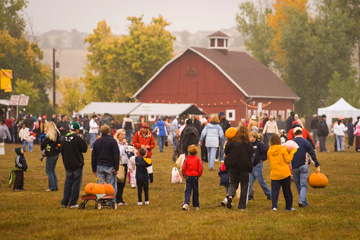 Come volunteer at the Pumpkin Festival. This is a fun event!