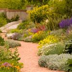 Water-Smart Garden in spring