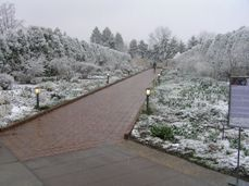 april-and-snow-017-small.jpg