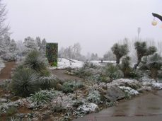 april-and-snow-019-small.jpg