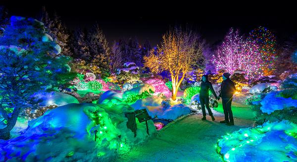 Denver Christmas Light Displays 2021 Designing A Holiday Light Show Denver Botanic Gardens