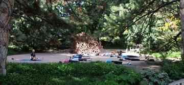 Yoga practice in the Oak Grove