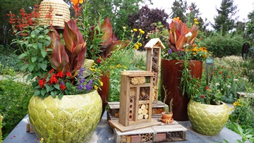 Beneficial Insect Hotel in Birds and Bees Garden