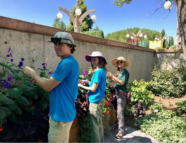 Groundskeepers Tyler O'Neil, Jocelyn Schilling and Horticultural Therapy Intern Gina Sferrazza working in the Sensory Garden