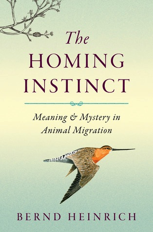 """The Homing Instinct"" by Bernd Heinrich"