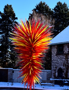 Chihuly yucca