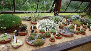 """The """"old"""" alpine house"""