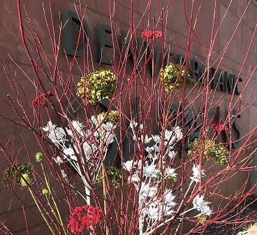 Bold flowers and bright twigs greet visitors at entrance
