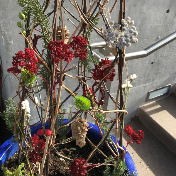 "A trellis ""tree"" adorned with teasel, moon carrot, stonecrop and spruce"