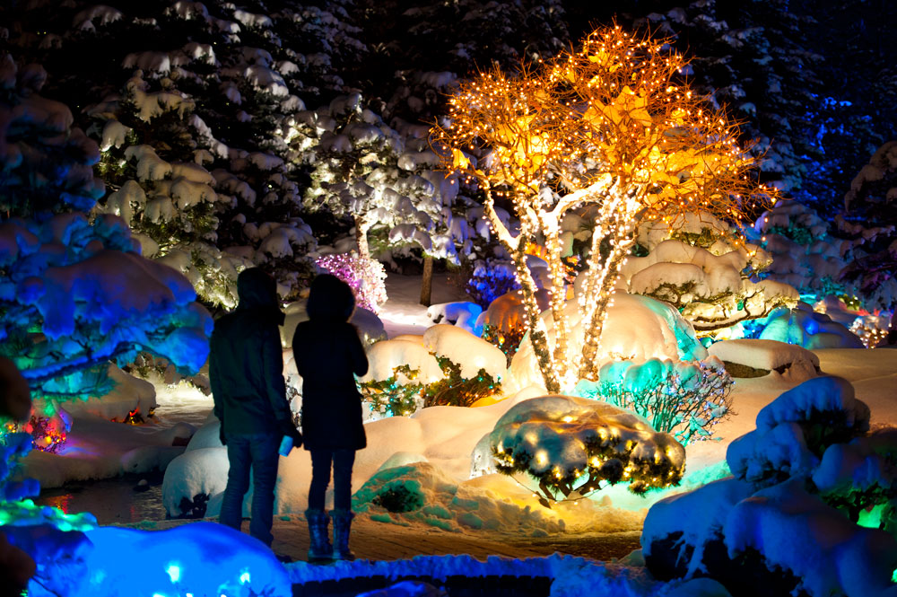 8 Botanical Garden Christmas Lights to Consider for Decorating