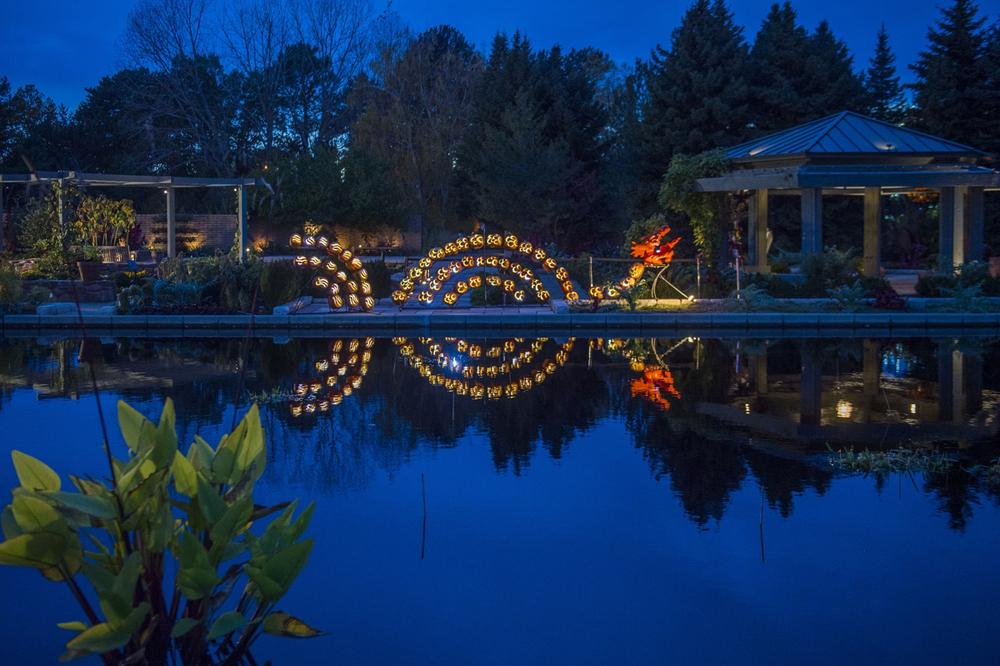 glow at the gardens denver botanic gardens