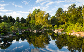 Japanese Garden at Denver Botanic Gardens