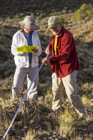 Rare plant monitoring in the field