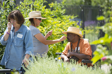 Summer Sensory Tour at Denver Botanic Gardens