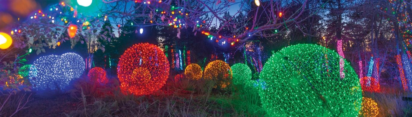 Voluntree Christmas Denver 2020 Blossoms of Light | Denver Botanic Gardens