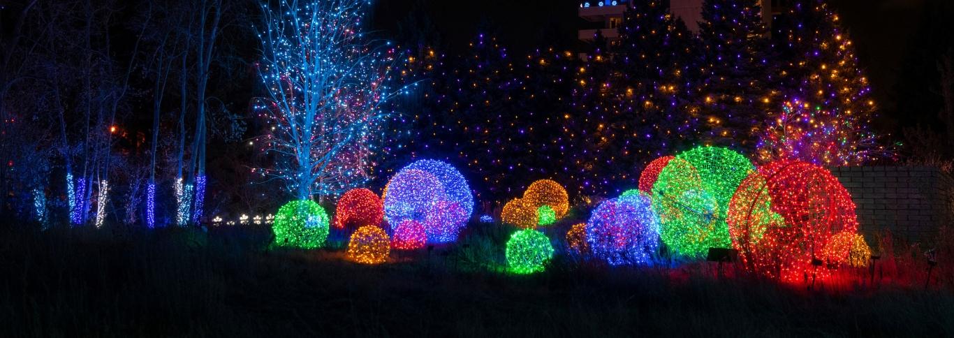 Denver Christmas Light Displays 2021 Blossoms Of Light Denver Botanic Gardens
