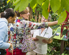 Volunteer for plant tours
